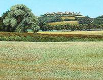 Tuscan Landscape (Monterrigioni)