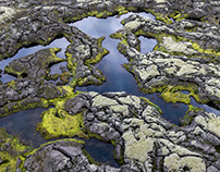 Discover Wild Iceland 59
