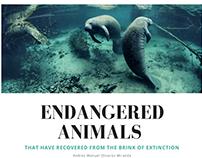 Andres Manuel Olivares Miranda | Endangered Animals