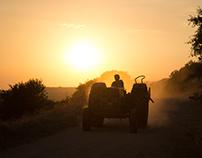 Golden Hour - Farmer