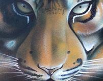 :: Feline portraits ::