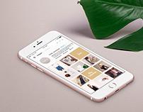 Lola, Concept store - Brand Design