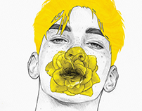 The Yellow Series I