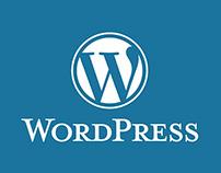 PSD to WordPress Theme Conversion.