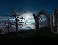 Moonlit Abbey