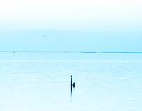Borolous Lake, Egypt