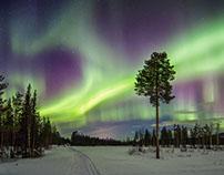 Découverte de la Laponie