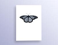 Blue Butterfly Botanical Wall Art Print