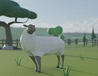 low grass sheep