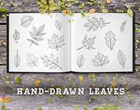 Hand-Drawn Leaves