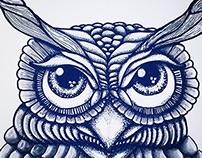 """Owl Drawing"""