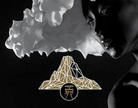 - ivana concert cd / 2014