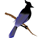 Bird 'Logo' Designs (3 images)