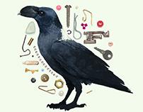 Raven's Cache