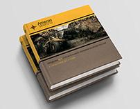 Marketing kit for «Ameron-GROUP» (2015)