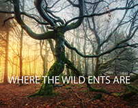 Where The Wild Ents Are