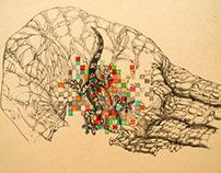 Pixellated Species #2 [Paroedura hordiesi]