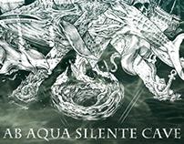 X. Ab aqua silente cave