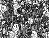 TULIP FEVER Original ink drawings