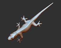 Digital sculpting - Gecko