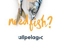 Allpelagic | Branding & Web