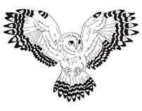 Midnight Owl Illustration