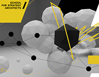 School For Strategy Architects