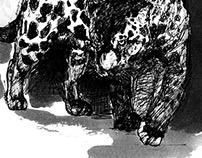 Panther _ Book 2013