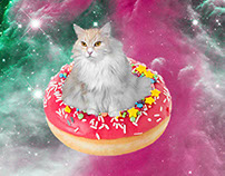 Galaxy Cat Collection