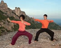 Tai Chi Practice and Theory