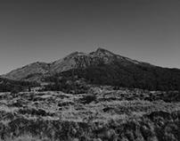 Black Lava Fields