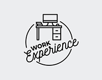 2017 - Work experience