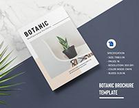 Multipurpose Portfolio Brochure Template