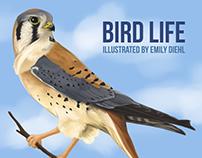 Bird Life Book Cover