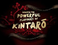 Kintaro - Illustration & Web Design