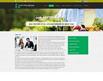Home Page design for Aryan International