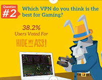 VPN Survey Infographic