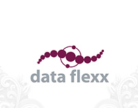 data flexx