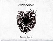 Aetos Nidum. Concept Art. Character Design