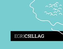 EGRI CSILLAG / wine identity
