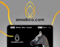 Ansabco Website Design