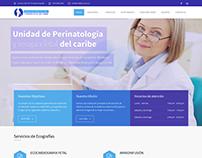Sitio Web Institucional - Unifetal