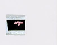 Collage 2 // Skin