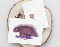 Porcupine Note Card in Watercolor