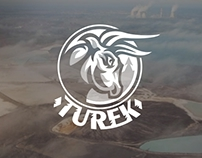 The city of Turek logo concepts