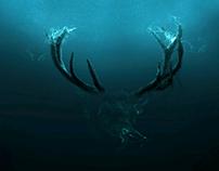 Deer soul