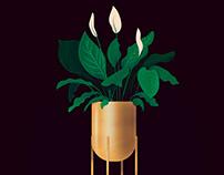 Golden Plant Pot