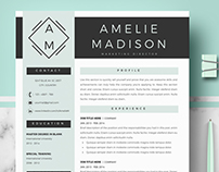 Professional resume template for MS Word and Mac Pages