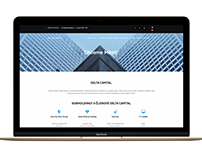 DELTA CAPITAL new corporate web