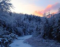 iphone photography-Winter wonderland 2